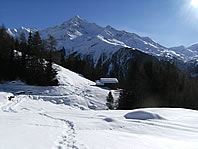 skiing,snowboarding,ice skating,snowshoe walking at Santa Caterina Valfurva - Italy